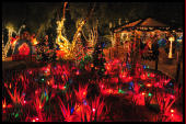 Ethel M Cactus Gardens are open year round, here decorated with 750,000 lights for the annual holiday display.